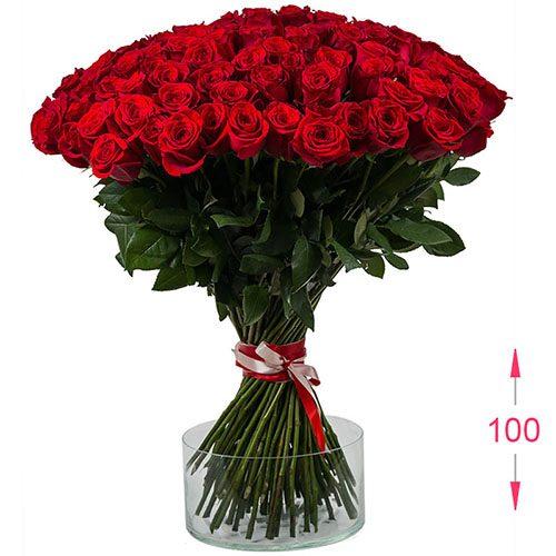 букет 101 метрова троянда