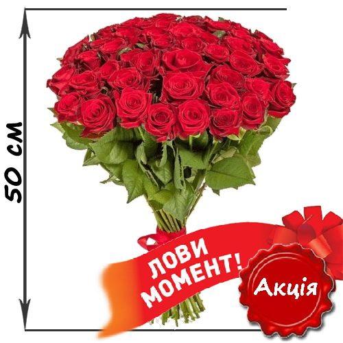 Фото товара 51 червона троянда (50см) во Львове