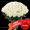 Фото товара 51 біла троянда (50 см) во Львове