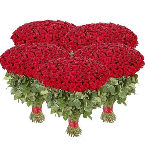 букет 501 червона троянда фото