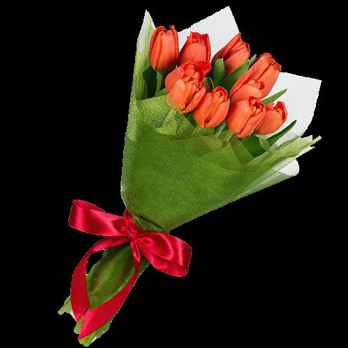 Фото товара 11 червоних тюльпанів во Львове