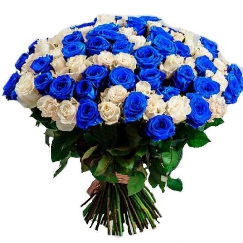 Фото товара 101 біла і синя троянда (фарбована) во Львове
