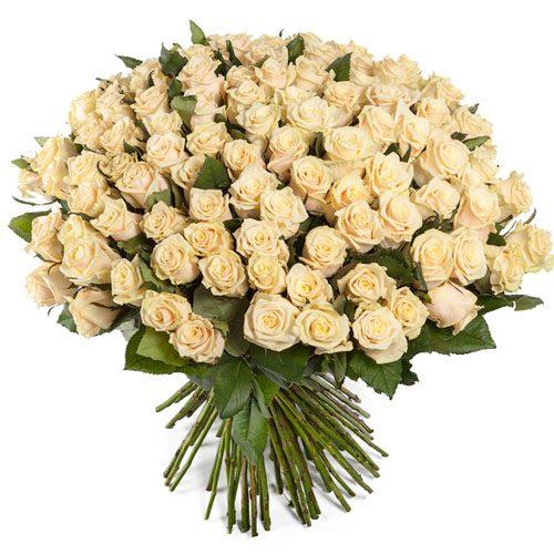 Фото товара 101 кремова троянда во Львове