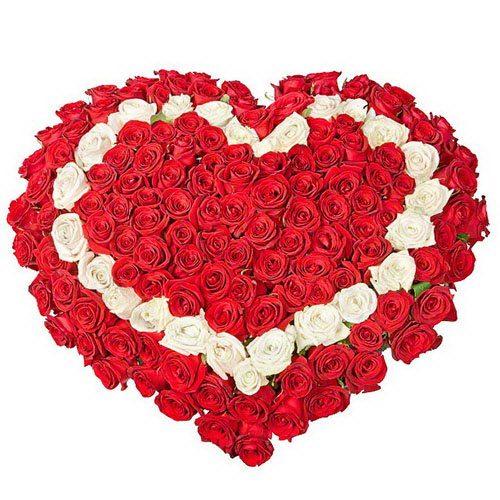 Фото товара 101 троянда серцем - червона, біла, червона во Львове