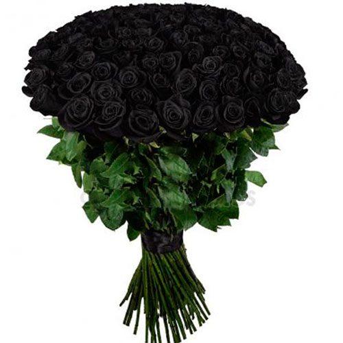 Фото товара 101 чорна троянда во Львове