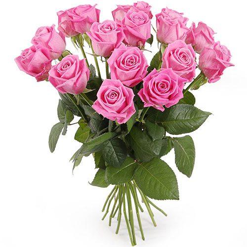 """Фото товара 15 троянд """"Аква"""" во Львове"""
