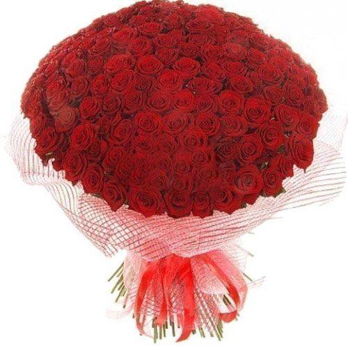 Фото товара 201 червона троянда во Львове
