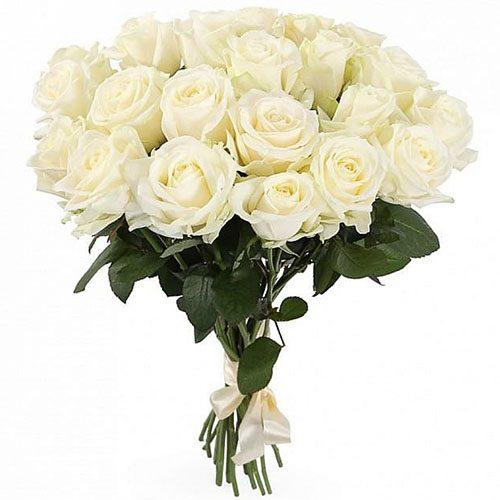 Фото товара 21 біла троянда во Львове