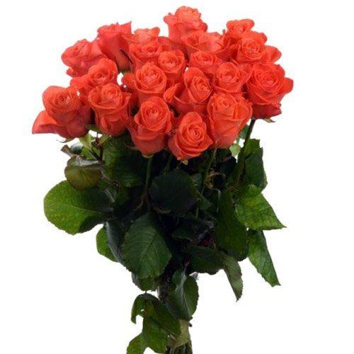 "Фото товара 21 троянда ""Вау"" во Львове"