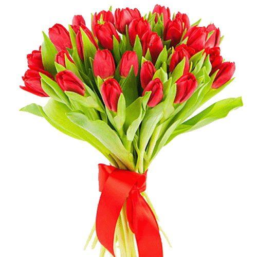 Фото товара 25 червоних тюльпанів во Львове
