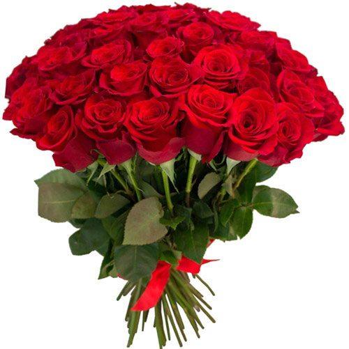 Фото товара 75 червоних троянд во Львове