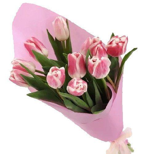 Фото товара 11 рожевих тюльпанів во Львове