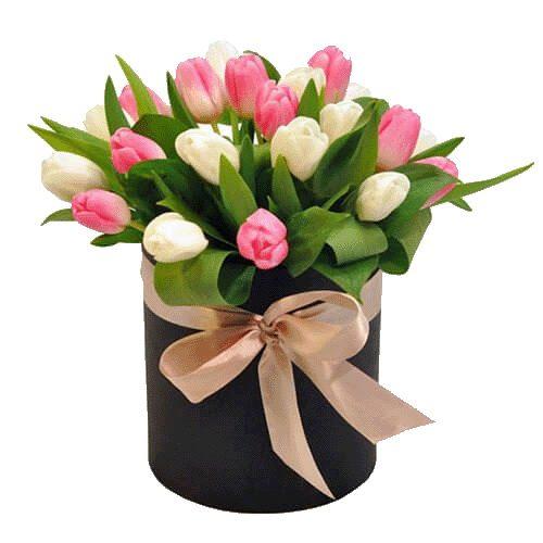 Фото товара 25 тюльпанів у коробці во Львове