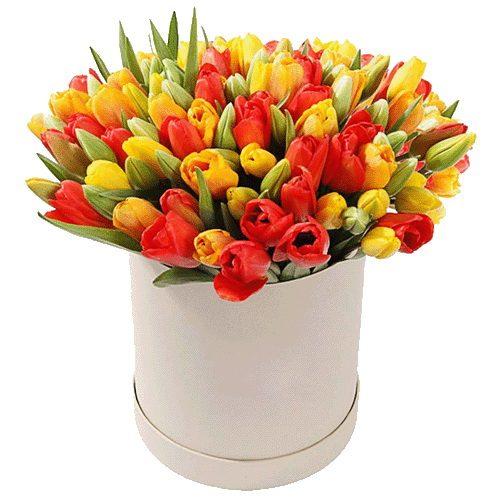 Фото товара 101 тюльпан у коробці во Львове
