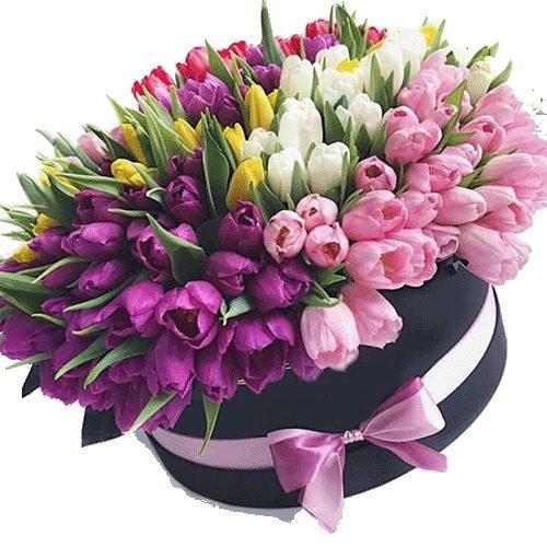 Фото товара 151 тюльпан у капелюшній коробці во Львове