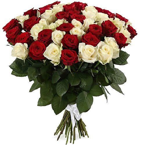 Фото товара 51 червона та біла троянда во Львове