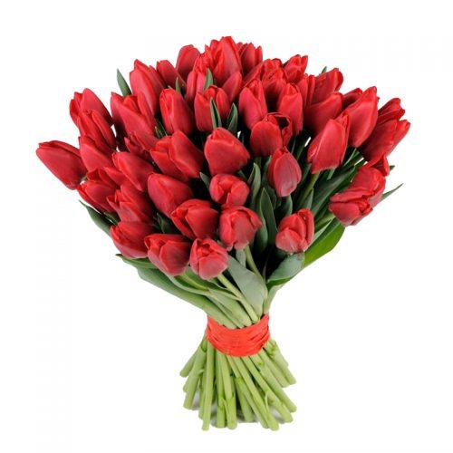Фото товара 51 червоний тюльпан во Львове