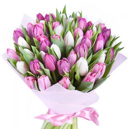 Фото товара 51 біло-рожевий тюльпан во Львове