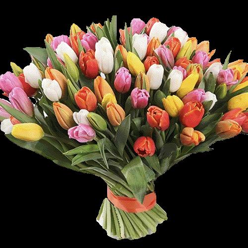 Фото товара 101 різнокольоровий тюльпан во Львове