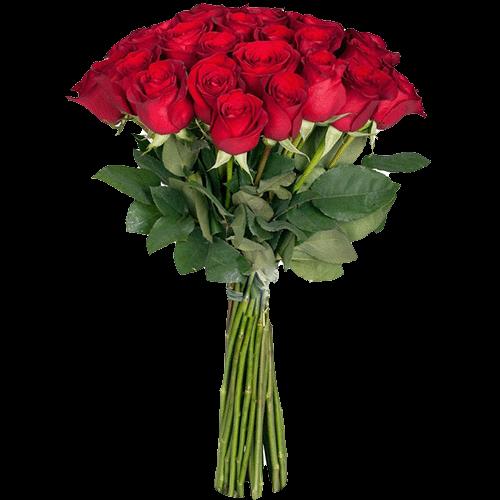 Фото товара Екстра троянда (поштучно) во Львове