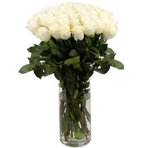 Фото товара Троянда імпортна біла (поштучно) во Львове