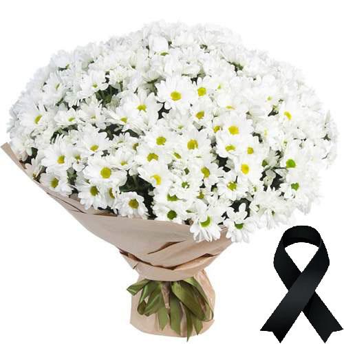 Фото товара 100 ромашок на похорон во Львове